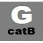 gas_b_2